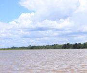 037_amazon_river