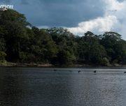 Pacaya Samiria National park landscape
