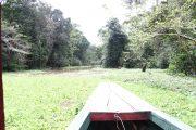 Exploring the Yanayacu basin