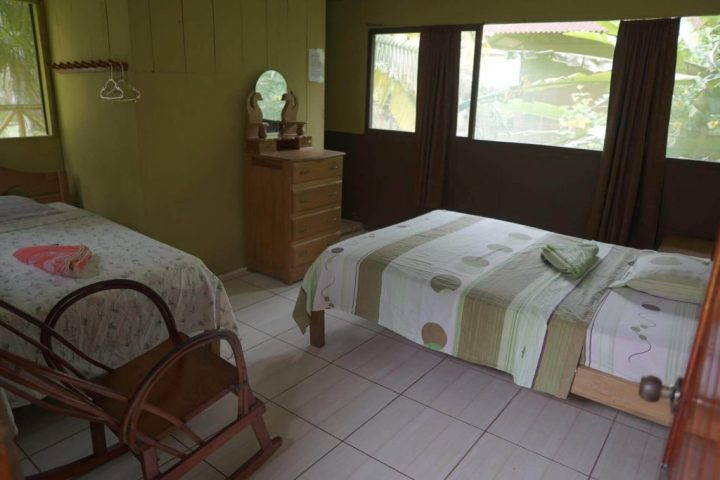 Check out the rooms in the Amazon lodge