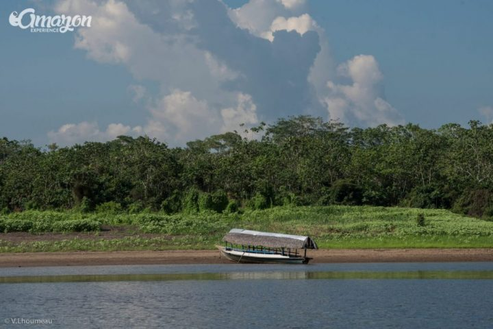 Small boat by the riverside in the Amazon rainforest