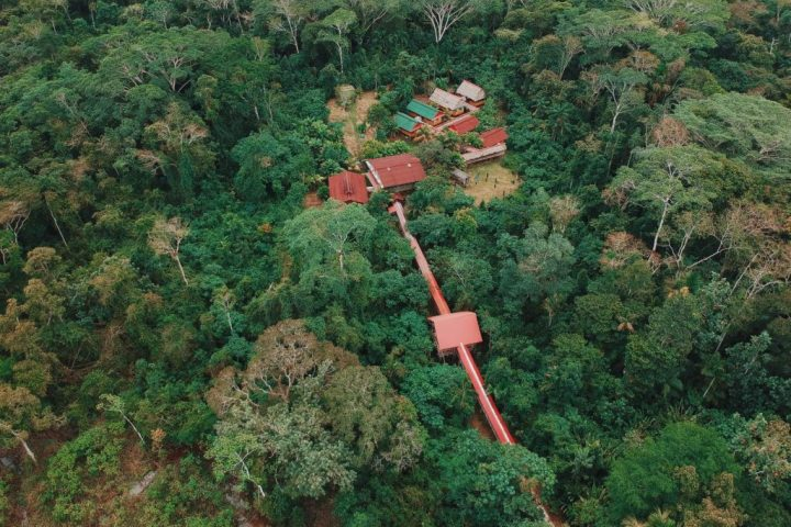 Amazon river lodge in the tropical rainforest