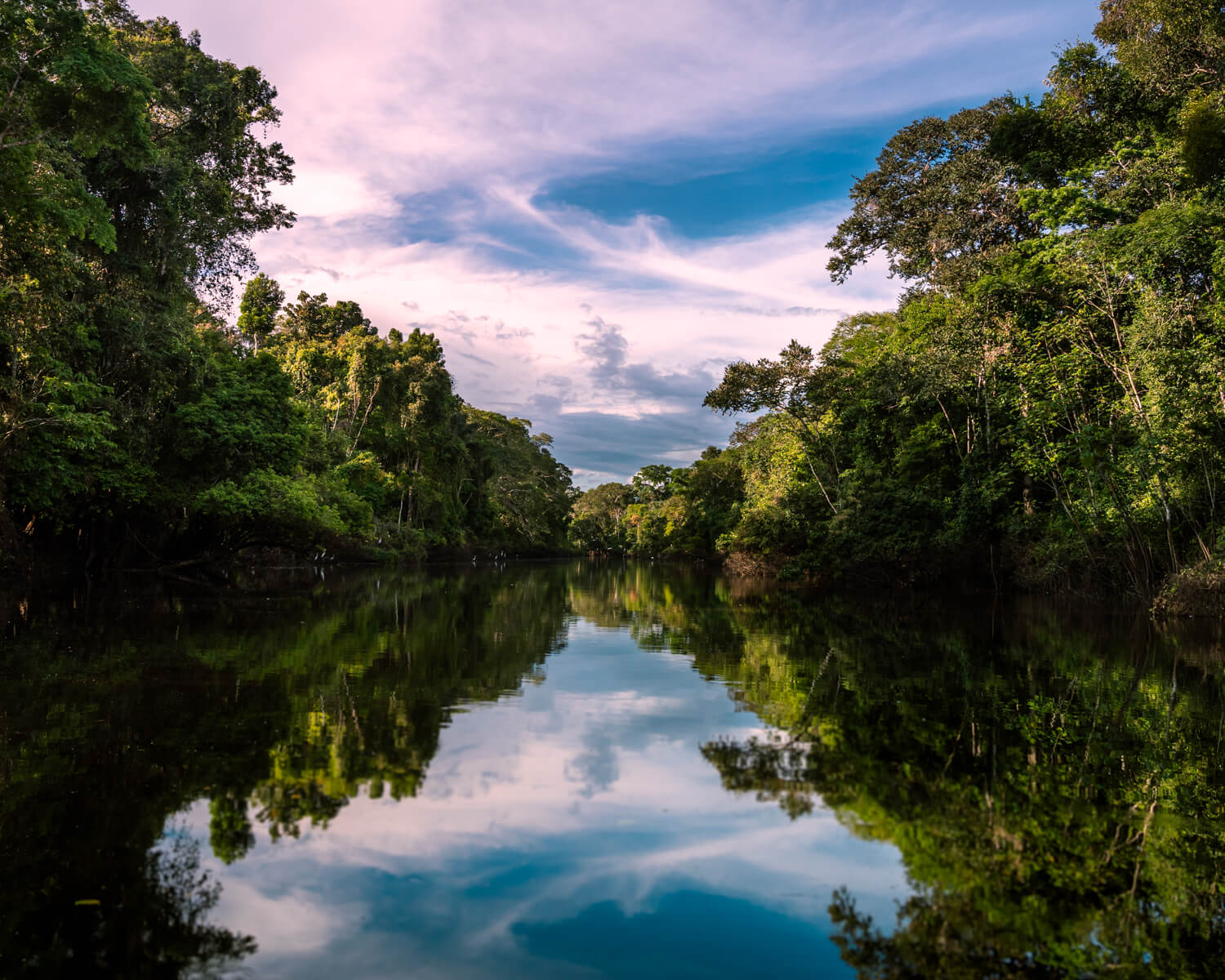 Pacaya Samiria National Reserve is the Jungle of mirrors