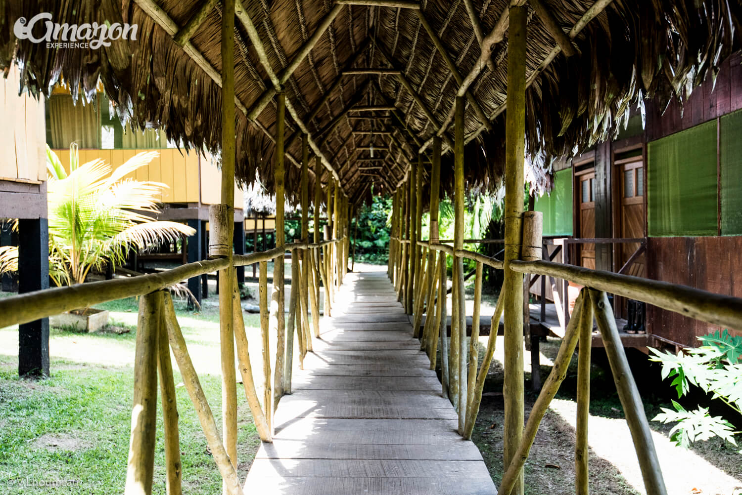 Amazon Experience lodge near Iquitos, Peru